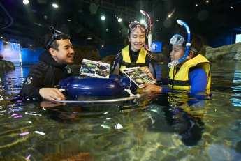 Grand Aquarium Exploration