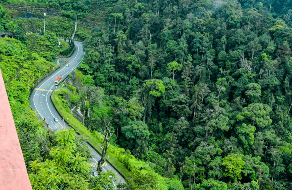 5 Beautiful Road Trips in Malaysia You Should Take Once in Your Lifetime