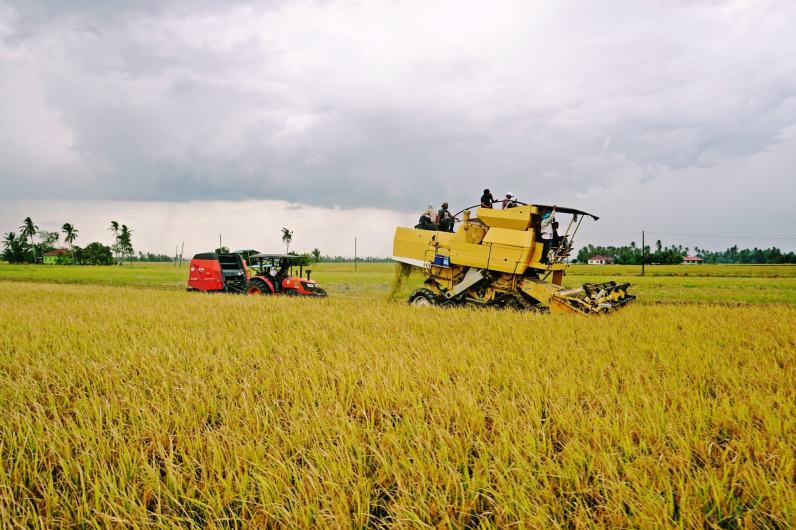 MNH Harvester