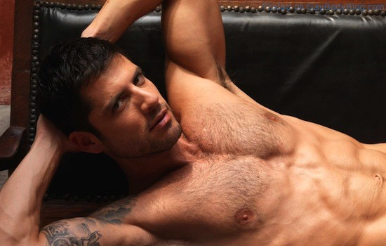 Another Hairy Hunk - Diego Arnary (3)