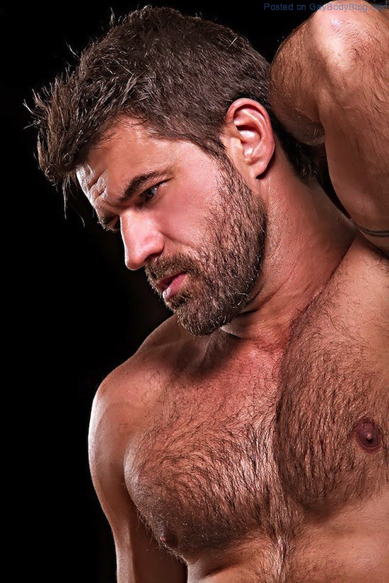 Masculine And Hairy Hunk Fabricio Ternes (5)