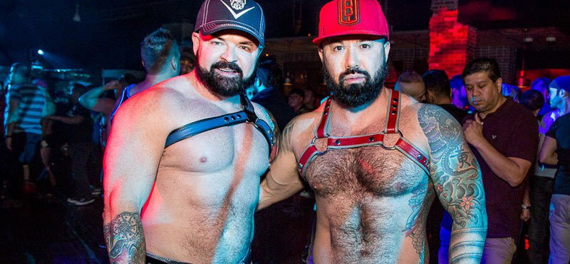 Gay Sex Vegas