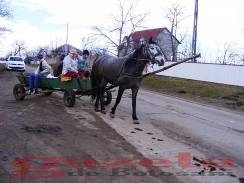 protest- drum- judetean-gropi-nicseni-roma-casa-fisuri-tinaj-rural-sate-drumuri-masini (42)