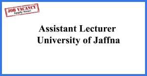 Assistant Lecturer