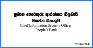 Chief-Information-Security-Officer