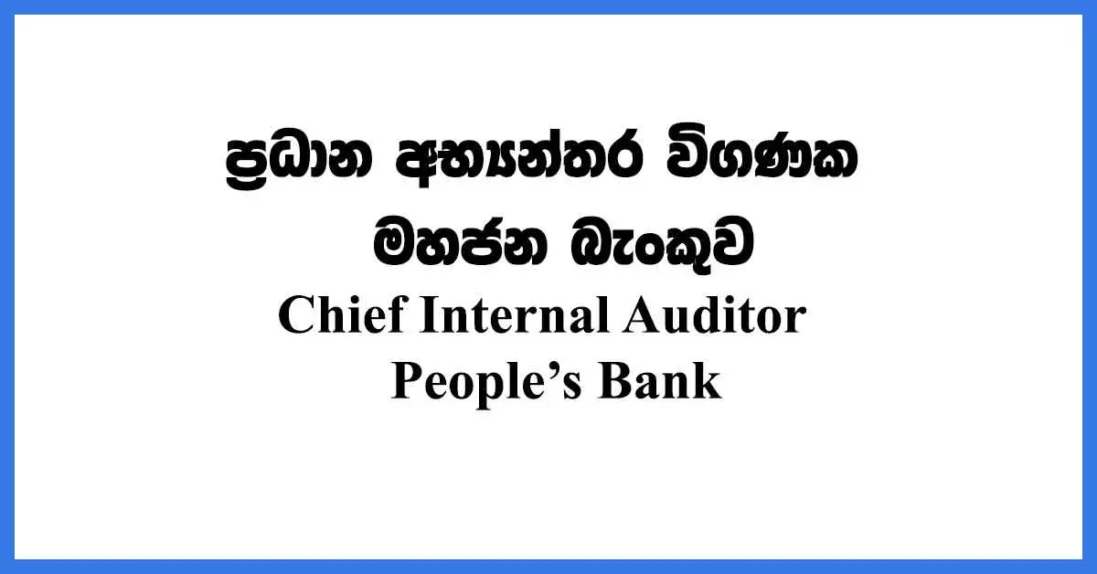 Chief-Internal-Auditor