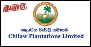 Secretary to General Manager - Chilaw Plantations Limited