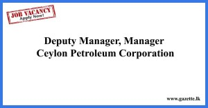 Deputy-Manager,-Manager