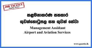 Management-Assistant---airport