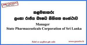 Manager-(Promotion-&-Publicity)