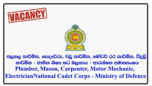 Plumber, Mason, Carpenter, Motor Mechanic, Electrician - National Cadet Corps - Ministry of Defence
