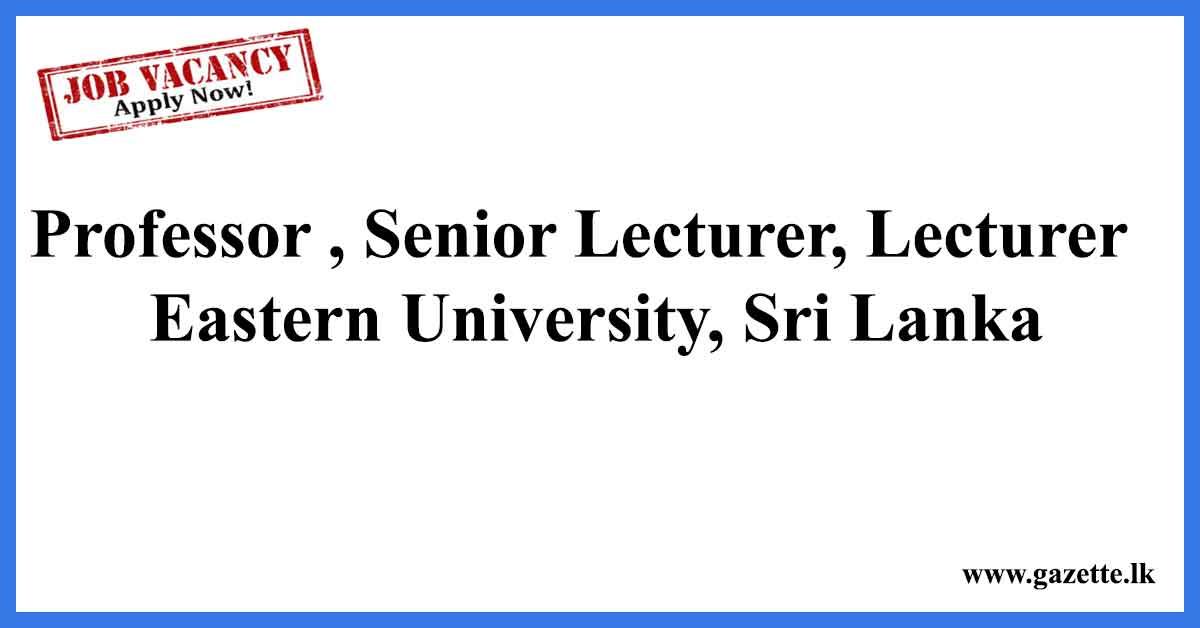 Professor-Senior-Lecturer,-Lecturer