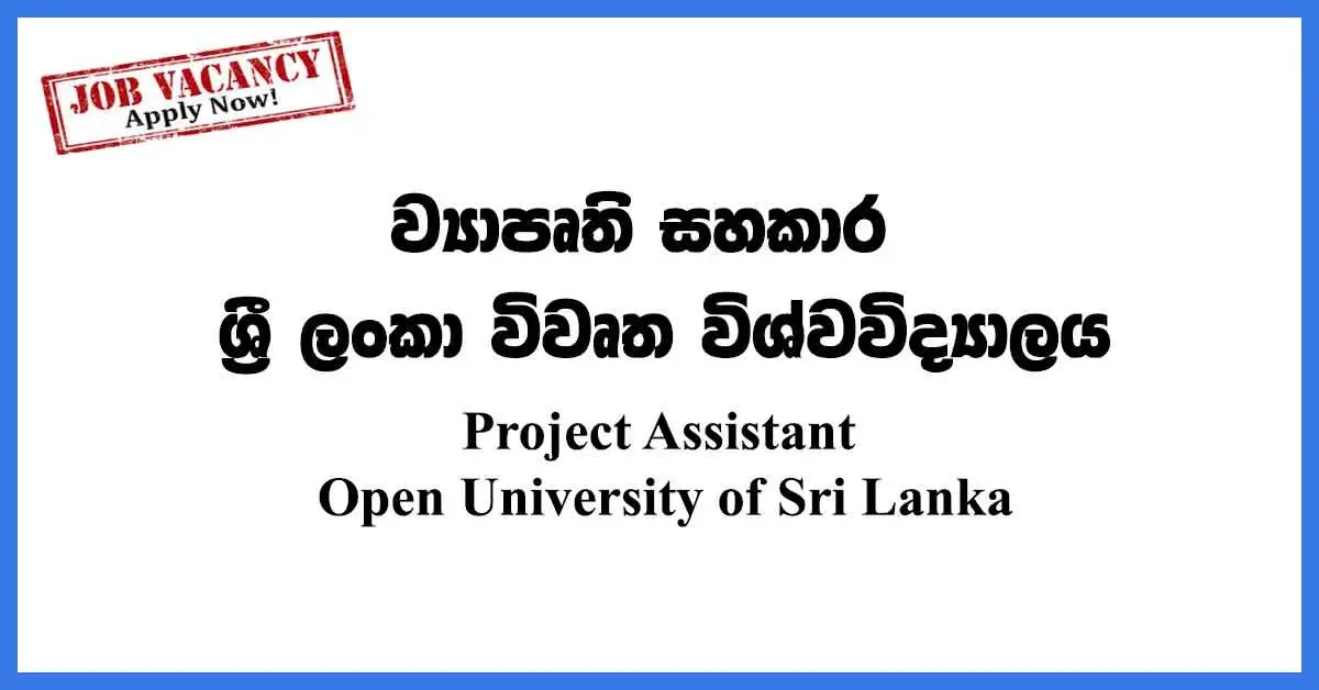 Project Assistant Open