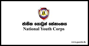national-youth-corps