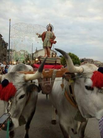 Processione di San Vito -Vallata