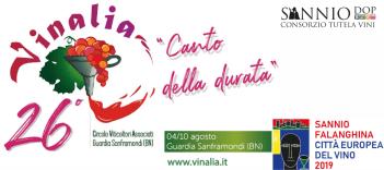 logo vinalia pdc
