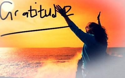 Gratitude (Sunday exclusive)