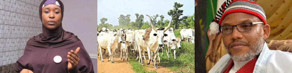Herdsmen flee as ESN invades Fulani camp; Aisha laments