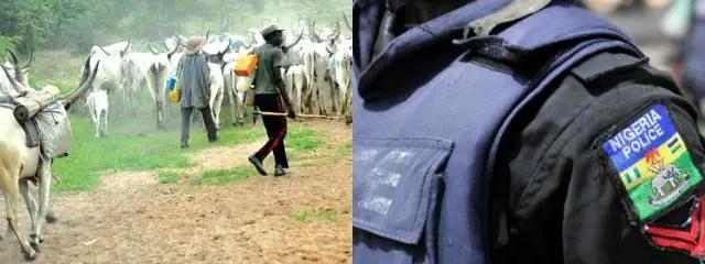 Fear As Herdsmen Kill Seven In Edo