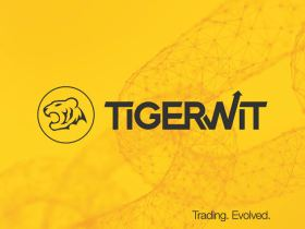 Tigerwit: The Best Time to Trade Forex in Nigeria?
