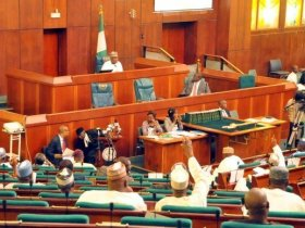 Lebanese Ambassador walked out on Nigerian Reps Members