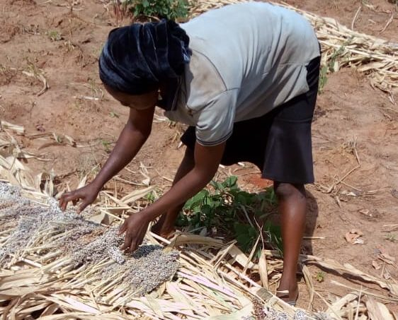 My Biggest Challenge in Agriculture - Female Farmer