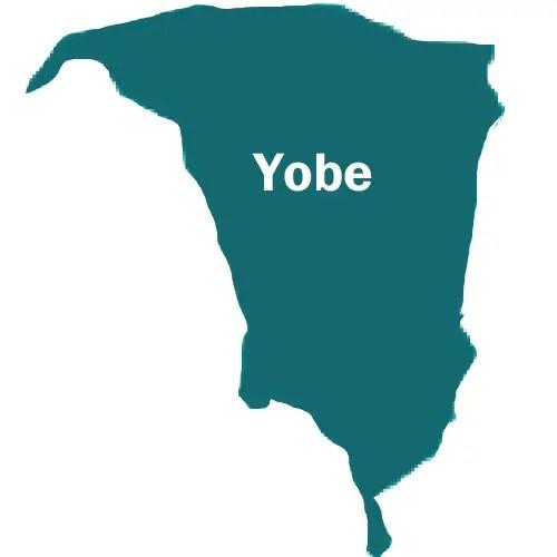 Nigerian Soldiers arrest suspected Boko Haram urea fertilizer supplier in Geidam LGA of Yobe State