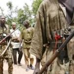 Hunters Invade N'Assembly, seeks to fight bandits, insurgents