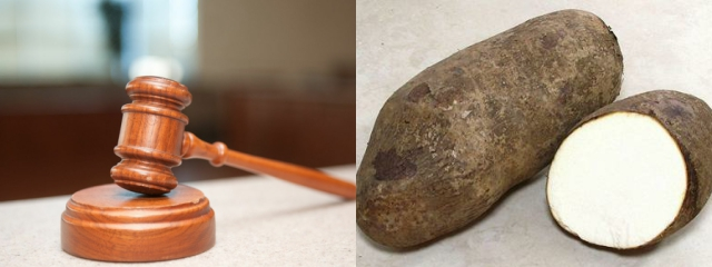 Court stops Igbo New Yam Festival in Kano state