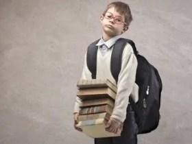 Life is too Hard: Impact of Excessive School Pressure on Children