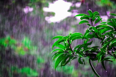 Why Sex is important during Rainy Season