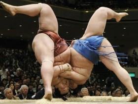 Shock as Japan Sumo Wrestler, Hibikiryu, dies after Head Injury