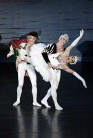 Les Ballets Trockadero (Torino, Teatro Nuovo, 16 X 2014)