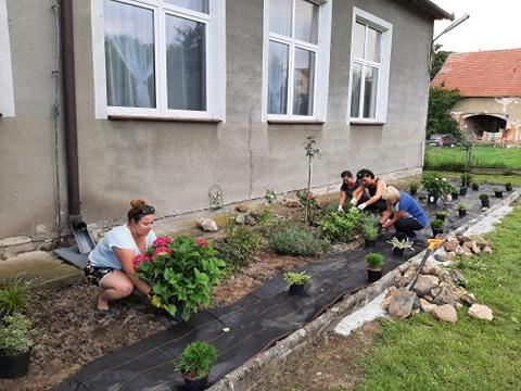 Sadzenie kwiatów i krzewów