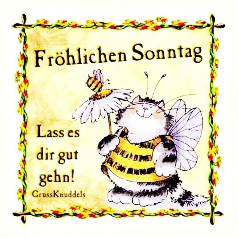 Bilder Fur Sonntag Bilder Und Spruche Fur Whatsapp Und Facebook