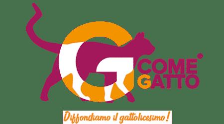 Risultati immagini per gatto tombili