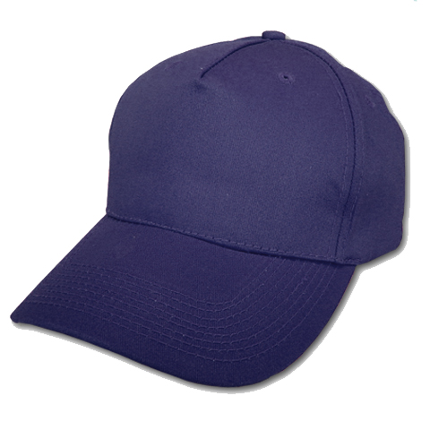 Memphis Cap Navy Blue