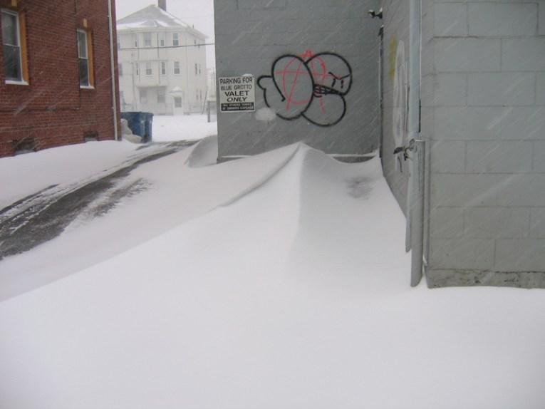 Blizzard   March 2, 2009