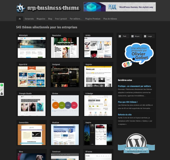 WordPress-business-themes-home