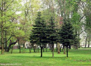 park Steffensa