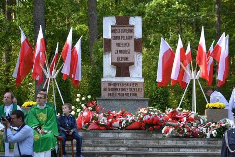 Pomnik w Lesie Szpęgawskim, źródło: domena publiczna
