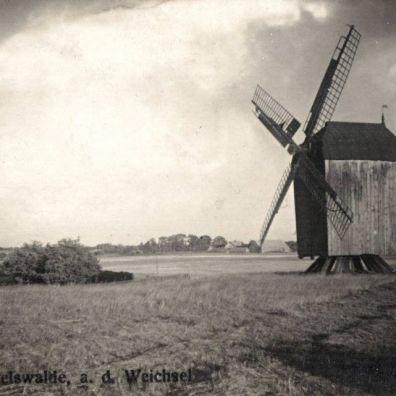 mikoszewo-wiatrak