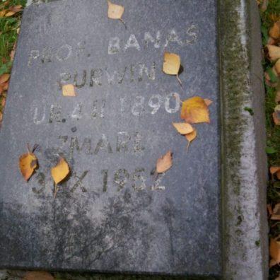 grób Kazimierza Banasia-Purwina