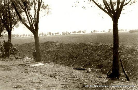 Już po walce... Radomski mauser z bagnetem wsparty o przydrożne drzewo...