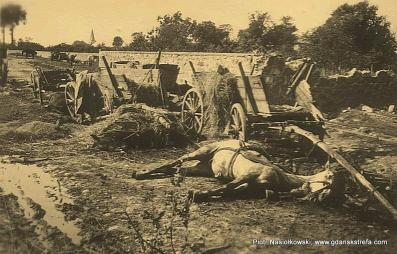 Efekt nalotu Luftwaffe masakra na drodze