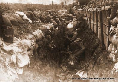Wojna Światowa - okopy wypełnione ciałami poległych żołnierzy
