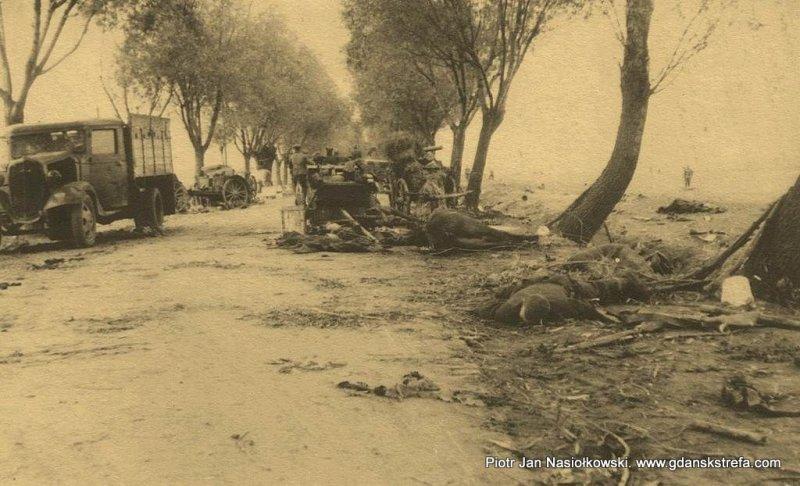 Efekt nalotu Luftwaffe na wycofującą się polską kolumnę wojskową