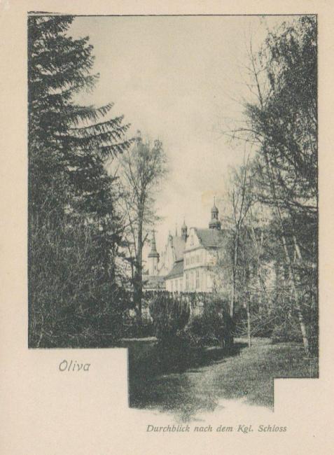 Oliva Palac i Katedra do 1915