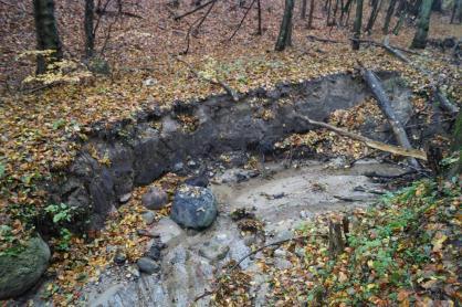 Erozja cieków leśnych wywołana brakiem retencji w obszarach zabudowanych Gdańska - Złotej Karczmy i Matarni.