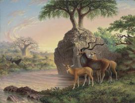 Rzeka Zambezi